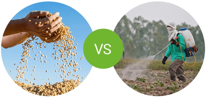 foodspring Protein Muesli: soy in comparison with competitor product